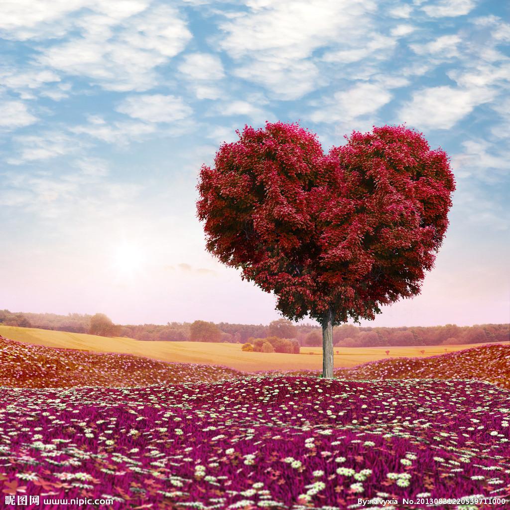 Bien-aimé Poésie pour exprimer son amour éternel à Amine AI12